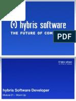 Hybris Software Developer - Warm Up