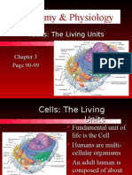 Chapter 3 - Cells