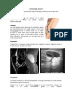Patologias Por Imagenes