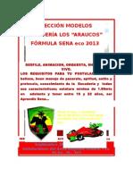 Afiche Modelo Sena Eco 2013