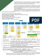 Resumen Normas y Procedimientos de Auditoria
