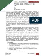 INGENIERIA DEL SOFTWARE II-2015 - Caso Practico Requerimientos
