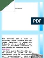 3a Flores Pico Dayana