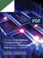 Técnicas de inteligência computacional com aplicações em problemas inversos de Engenharia