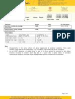 Report PDF 1 0005