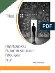 Professional Entrepreneurship Program