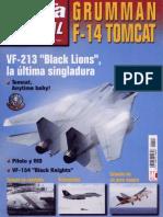 Fuerza Aera Especial 13 - F-14 Tomcat