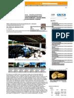 Na Onda Do Biodigestor - Revista Dinheiro Rural