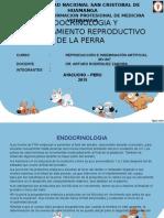 Diapositivas de Endocrinologia y Comportamiento Animal