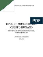 TIPOS DE MUSCULOS 11.pdf