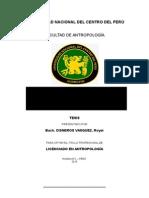 Informe Final de Tesis- Curso Taller Royer
