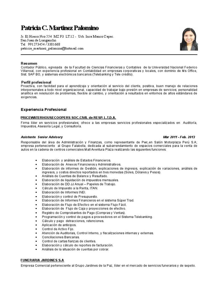 Hermosa Muestra De Curriculum Vitae Para El Contador En La Empresa ...