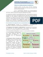 CARRASCO FARFAN - REGULACIÓN DE LA OSMOLARIDAD PLASMÁTICA.docx