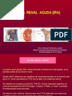 14.1-Injuria Renal Aguda