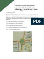 Informe Situcional Plaza Bandera