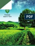 Manual de Identidad Corporativa Fundacion Nueva Vida