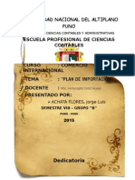 ACHATA FLORES, Jorge Luis - Plan de Importación
