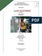 POLLOS_DE_ENGORDE.pdf