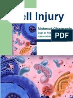 Cell Injury- English