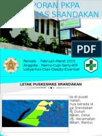 PPT Puskesmas Srandakan Untuk Diskusi 16.6.15