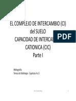 CIC-2012.pdf
