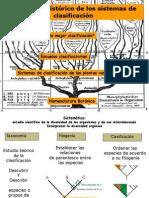 Clase2-2013- Sistemas de Clasificacion-Nomeclatura Botanica