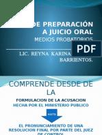 Lic. Reyna Torres - Etapa de Preparación a Juicio Oral2