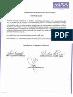 Concepto Comité de Avales y listado anexo