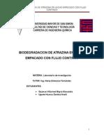 Informe Formal Pd
