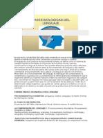 Bases Biólogicas Del Lenguaje Humano