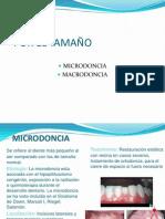 ALTERACIONES_DENTARIAS_2.pdf