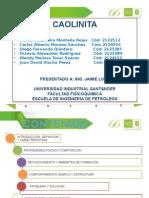 Exposición Final Caolinita 1