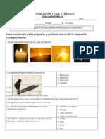 PRUEBA DE SÍNTESIS  C NATURALES 3°