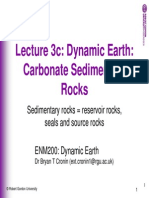 Slides 3c Carbonate Rocks 2010
