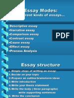 Essay Structute