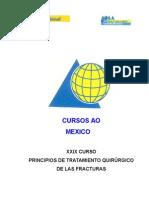 CURSO AO-SYLLABUS.doc
