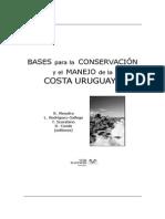 33 Ecología de Playas Arenosas de La Costa Uruguaya Una Revisión de 25 Años de Investigación Defeo