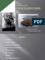 riscos nas ilhas dos acores elisabete