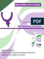 Guia Para La Implantacion Del Protocolo.okpdf