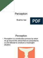 perception19-11