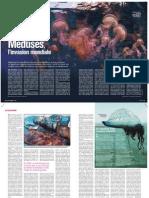 méduse, l'invasion mondiale