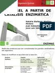 Biodiesel a partir de catálisis enzimatica