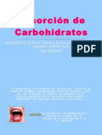 2A Absorcion de Carbohidratos -Las Barbies