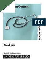 Programa titulacion Medicina Universidad Leipzig 31.05.10