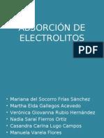 2b -Absorcion de Electrolitos Las Claudias