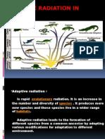 Adaptive Radiation in Living Reptiles