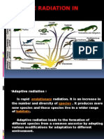 Adaptive Radiation in Living Reptiles