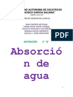 2b -Homeostasis Absorcion Del Agua- Las Iguanas