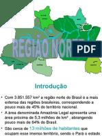 A GRANDE REGIÃO NORTE.ppt