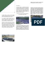 Contaminación de Ríos y Mares Por Desagües de Aguas Negras o Residuales
